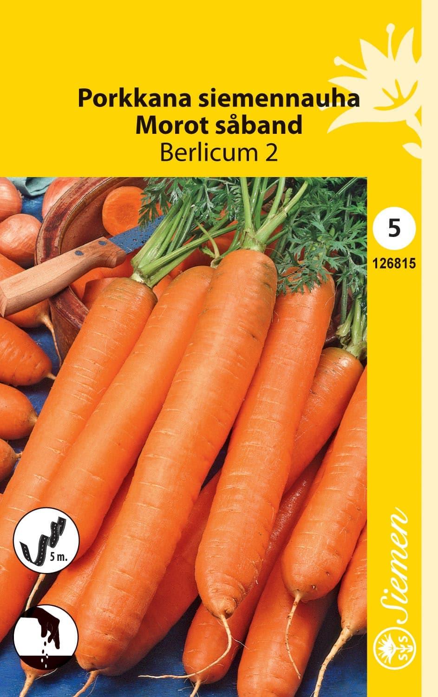 Porkkana siemennauha