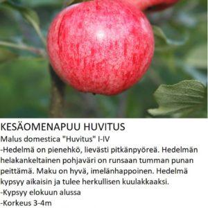 Omena huvitus