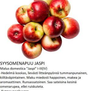 Omena jaspi